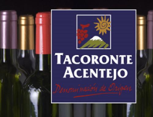 Se inicia la vendimia en la Pequeña DO Tacoronte-Acentejo